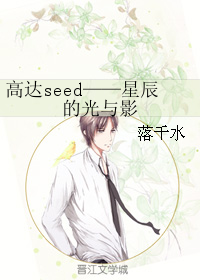 高达seed——星辰的光与影